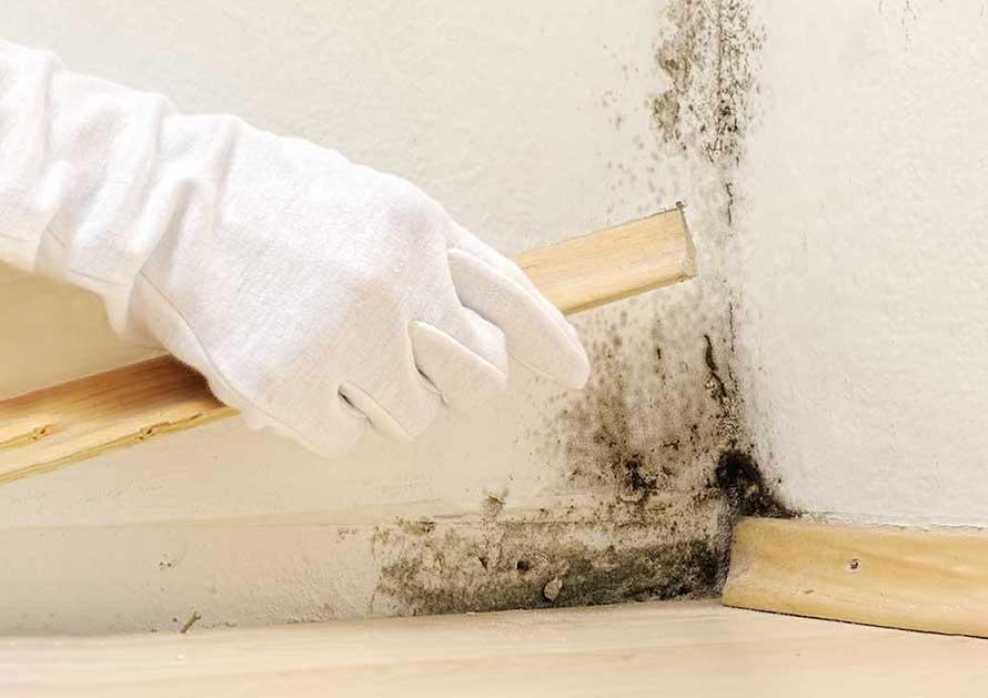 Revertum soluzione umidit di risalita - Soluzione umidita casa ...